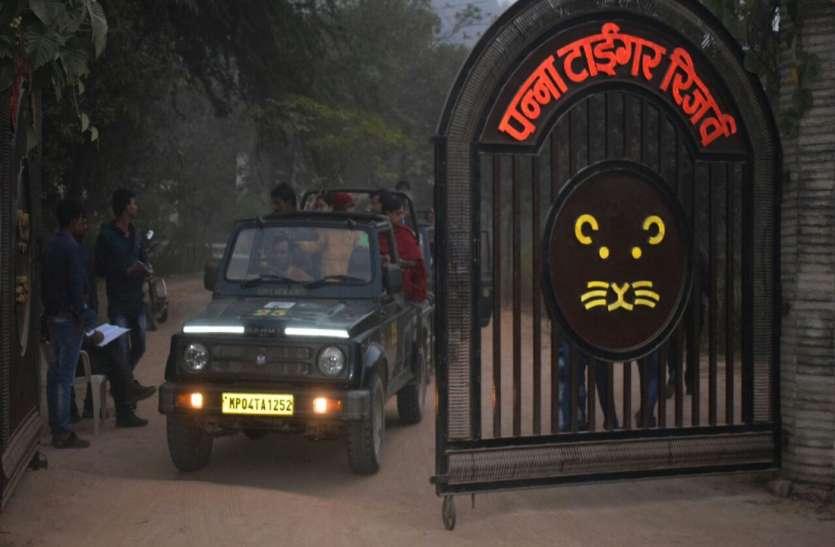 एनटीसीए ने लौटाई पन्ना टाइगर रिजर्व के पयर्टक वाहनों की संख्या बढ़ाने संबंधी मांग