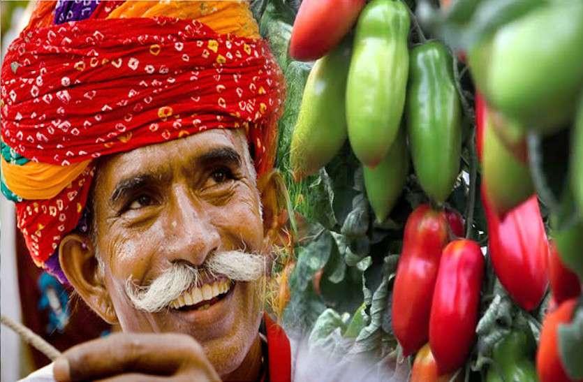 ये गांव बनेगा राजस्थान का पहला जैविक गांव, झोपडिय़ोंकी छत पर दिखेंगी कई तरह की सब्जियां, देश में बनेगा मिसाल