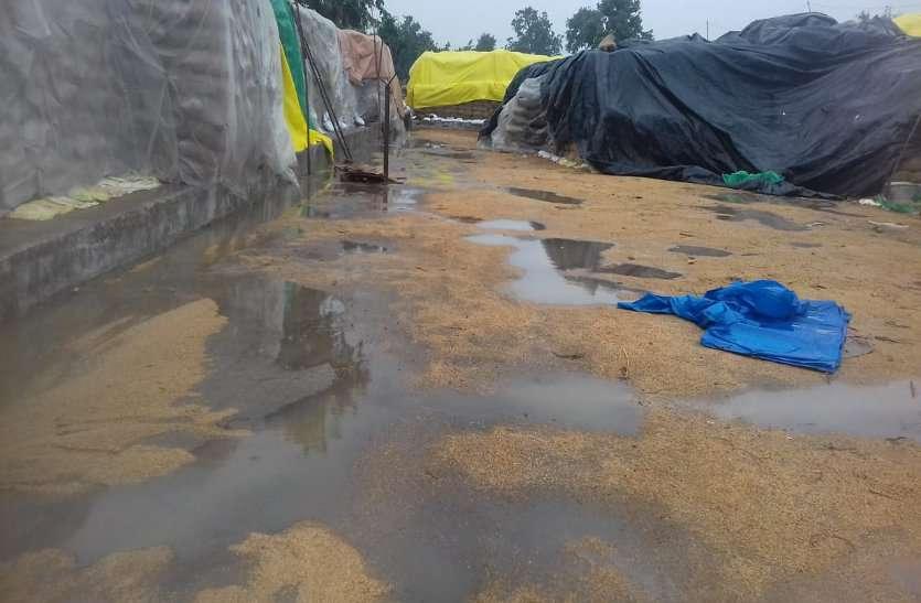 बेमौसम बारिश से बह रहा समितियों में रखा धान