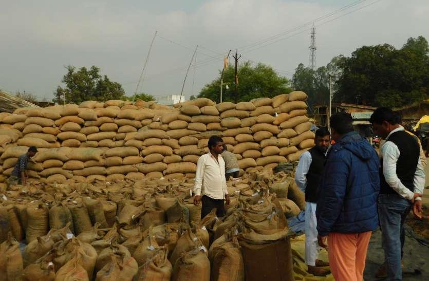90 फीसदी किसानों की आय का साधन चना बिक रहा माटी मोल