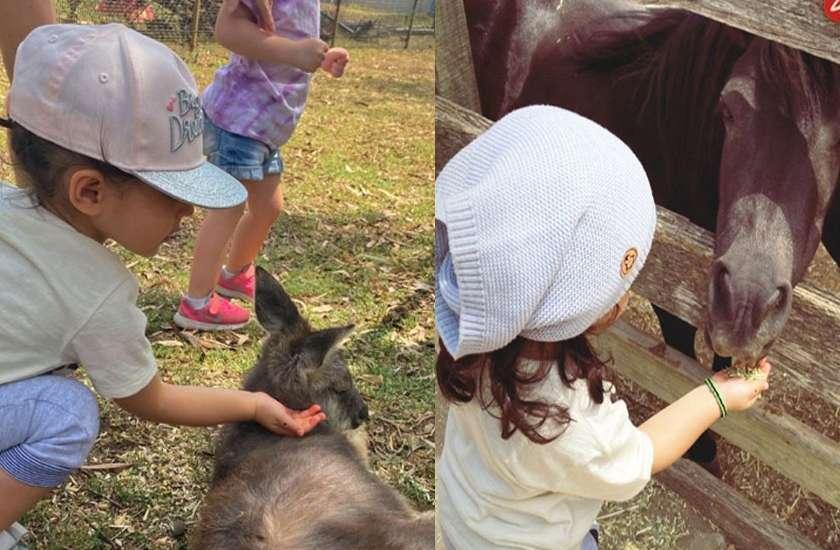 सोहा की बेटी इनाया ने  घोड़े के बच्चे, बकरियों और भेड़ों को हाथ से खिलाया खाना, देखें क्यूट तस्वीरें