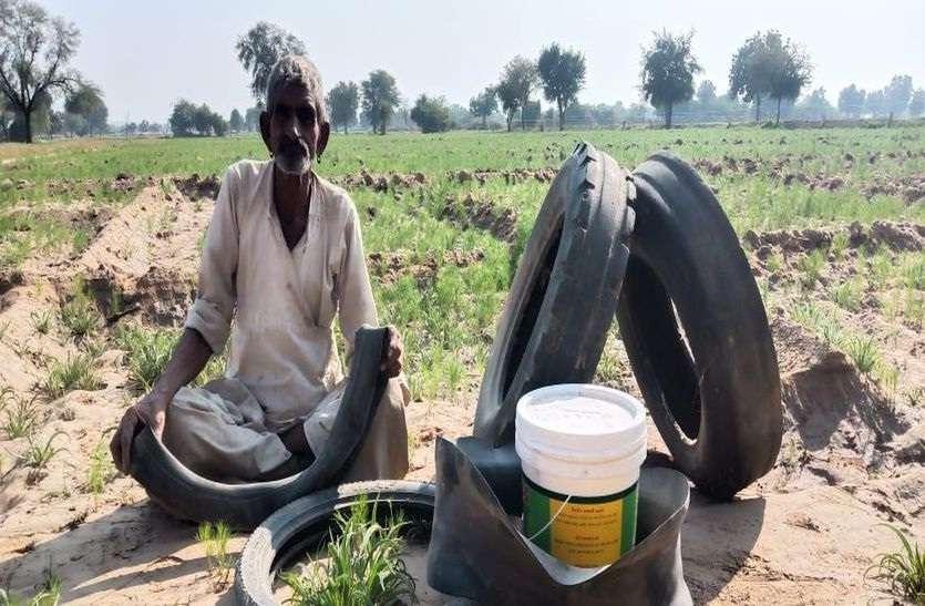 टिड्डी के आगमन की सूचना से अलर्ट दिखे किसान