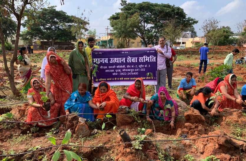 मानव सेवा समिति ने लगाए1100  पौधे