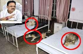 कोटा के बाद भरतपुर के सरकारी अस्पताल नेकिया शर्मसार, जानें अब क्या बोले स्वास्थ्य मंत्री