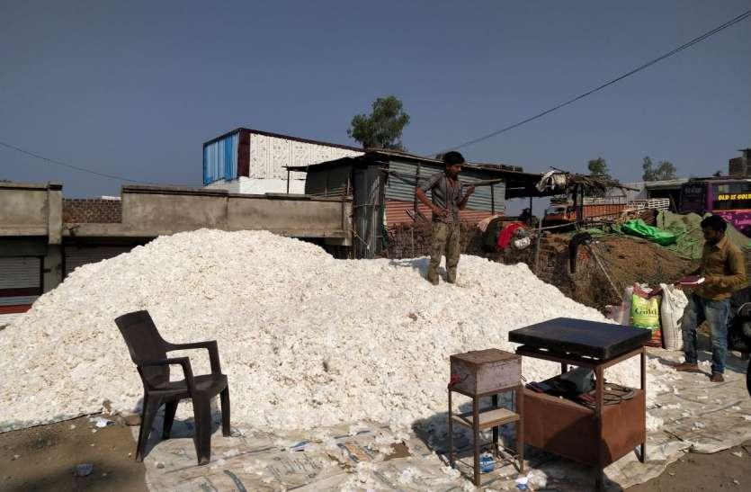 रायपुरिया के हाट-बाजार में दो महीने के बाद आया कपास