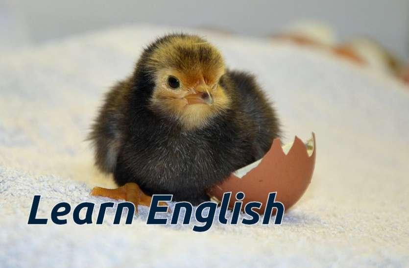 Learn English: जानिए अंग्रेजी भाषा के नए शब्द और बोलिए शानदार इंग्लिश