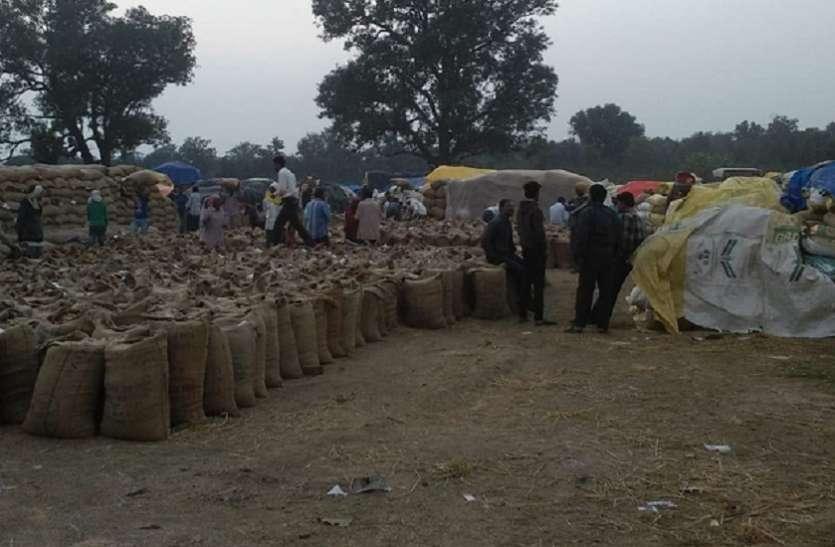 किसान धान की बंपर पैदावार के बाद भी नहीं बेच पाए उपज