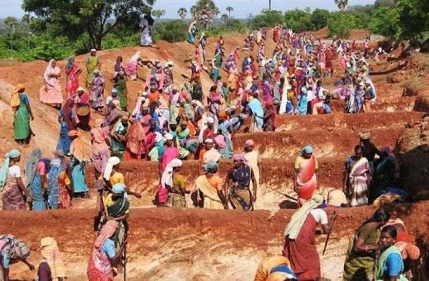 हरियाणा सरकार देगी मनरेगा श्रमिकों को देश में सबसे ज्यादा मजूदरी, जानिए कितने रुपए मिलेंगे?