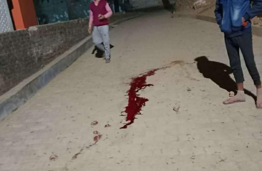 चित्रकूट में महंत को मारी गोली, मौत
