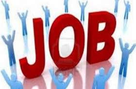 12वीं पास युवाओं के लिए नौकरी का सुनहरा मौका, बस एक इंटरव्यू पर मिलेगी नौकरी, जानिए कैसे
