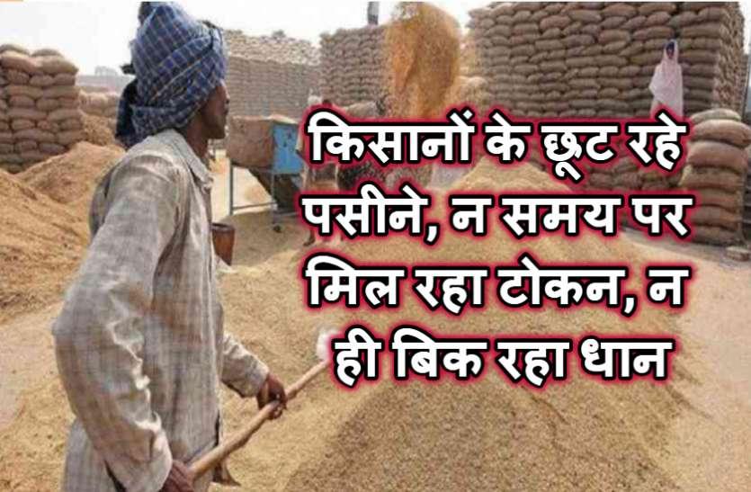 धान बेचने में किसानों के छूट रहे पसीने, 47 दिन बाद भी नहीं हुआ बिके धान का भुगतान