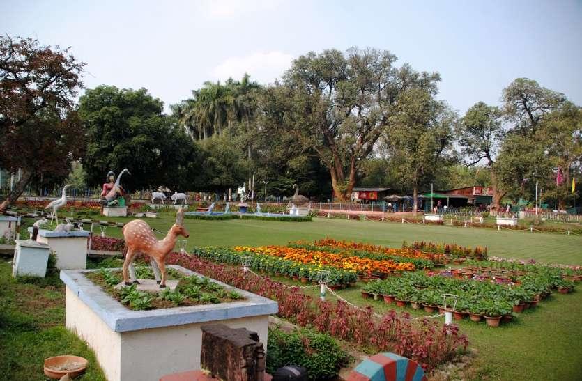Photo Gallery : 3000 गमलों से सजेगा गार्डन, रंगबिरंगे फूल कराएंगे फील गुड