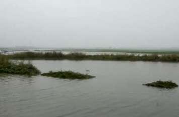 नहर और बारिश के पानी से सैकड़ों बीघे फसल बर्बाद, ग्रामीणों ने लगाए आरोप