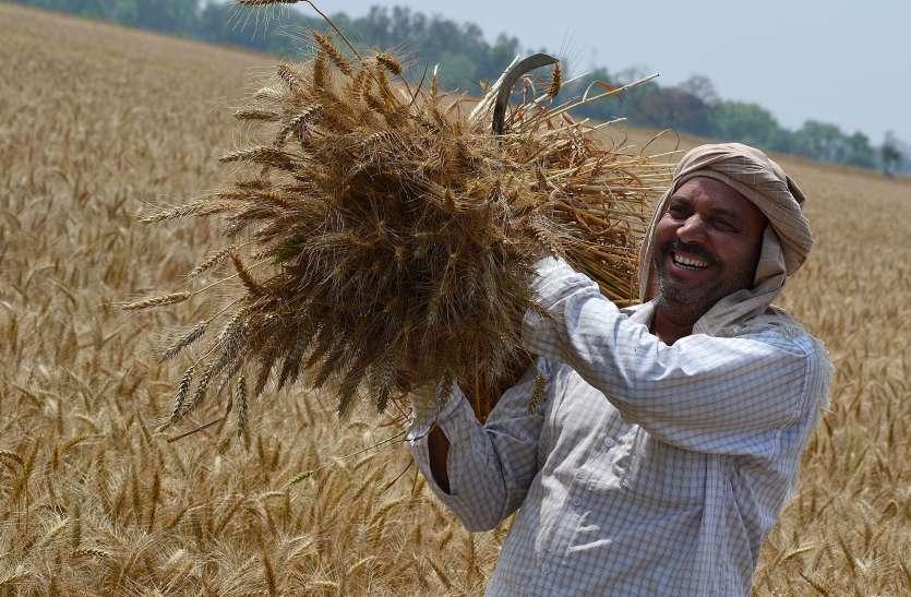 सुखद बढ़ापे को लेकर ज्यादा जागरूक हैं हरियाणा के किसान