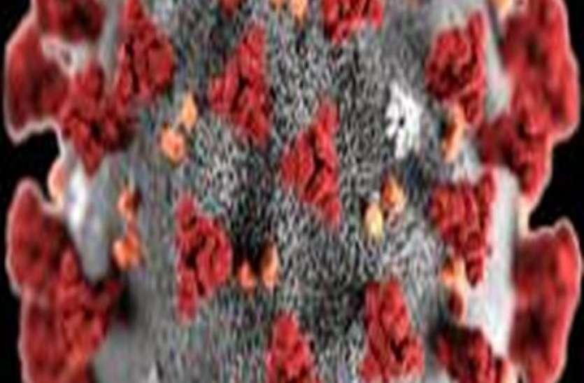 कोरोना वायरस की स्क्रीनिंग में पूरी सतर्कता