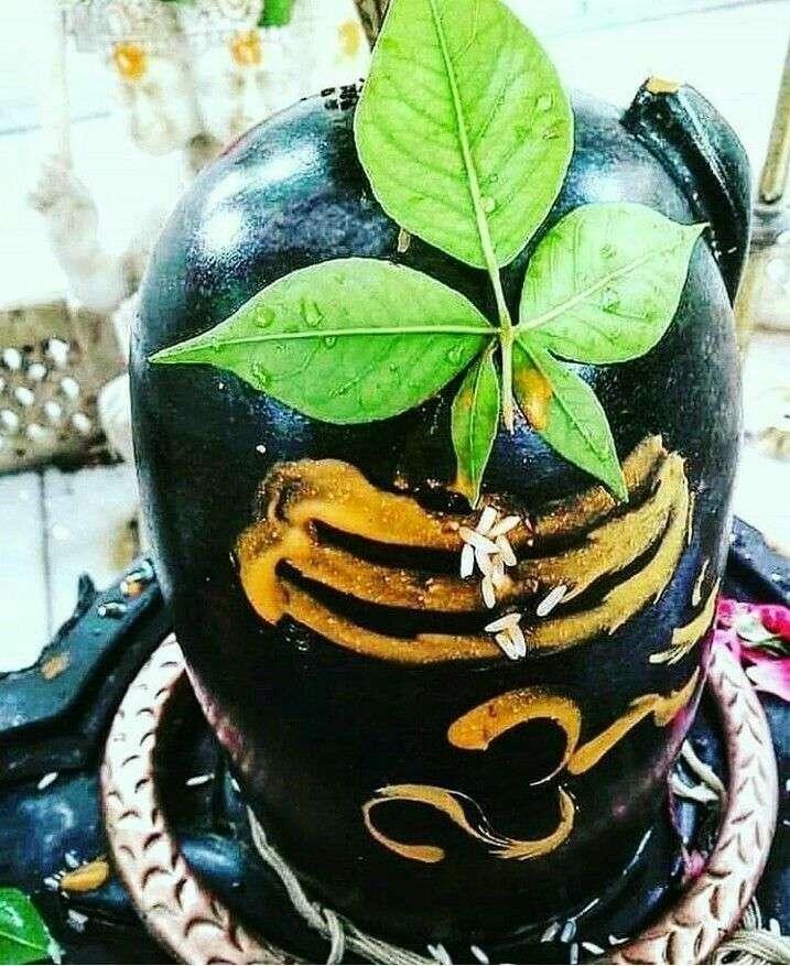 महाशिवरात्रि के दिन भगवान शिव को चढ़ा दें ये एक चीज, मिल जाएगा सबकुछ