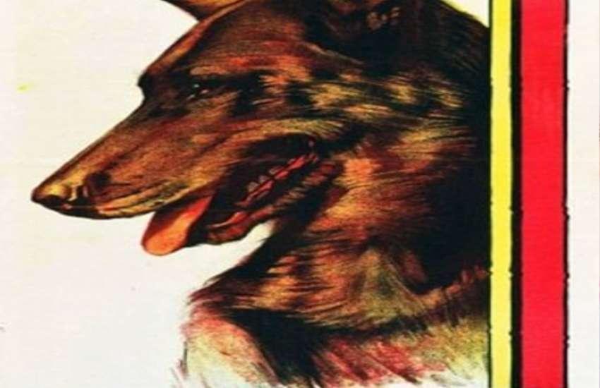 Dog Rin Tin Tin