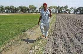 Farmers Loan : किसानों को चार हजार करोड़ का फसली ऋण : आंजना