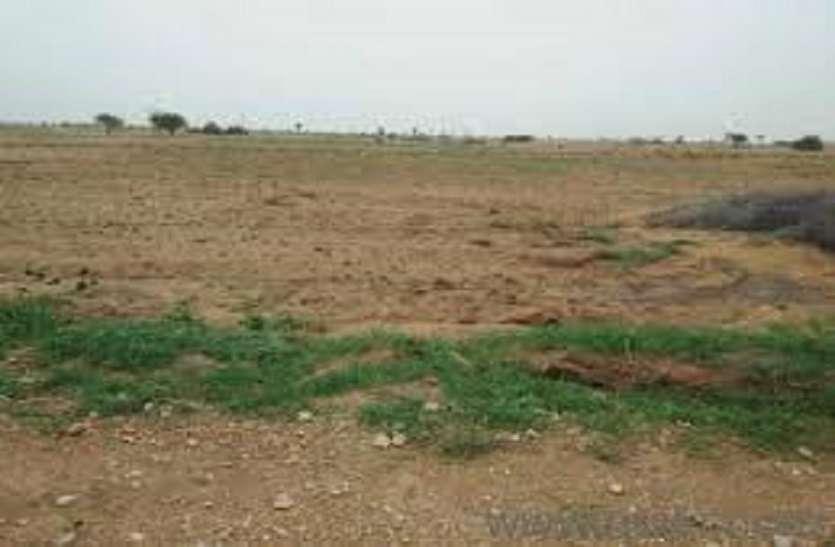 किसानों की गैर खातेदारी भूमि को खातेदारी में बदला जाएगा - राजस्व मंत्री