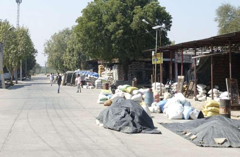 मण्डी में दूसरे दिन भी रही हड़ताल