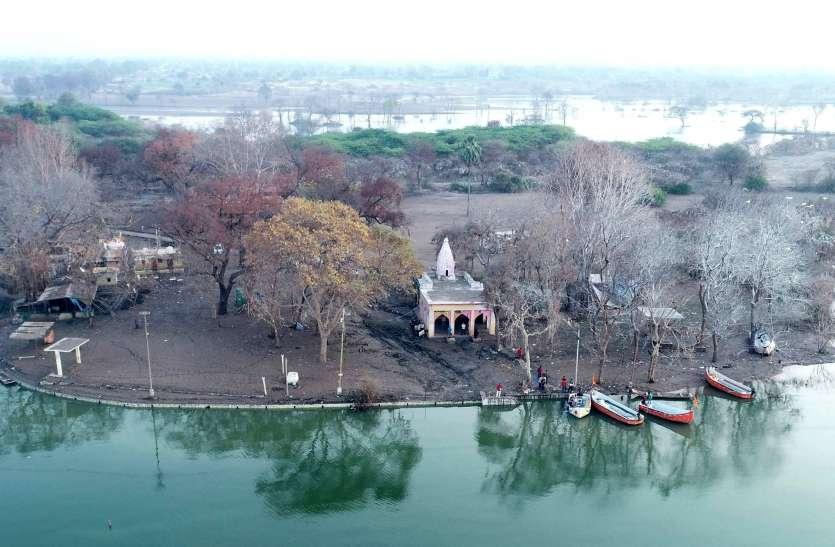 डूब की त्रासदी ने राजघाट को किया बेनूर, अब बचे है सूखे ठूंठ