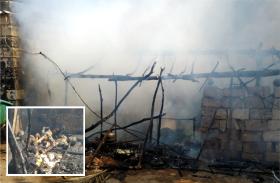 झोपड़ी में लगी आग, मजदूर परिवार के 3 बच्चे जिंदा जले