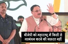 महाराष्ट्र के अगले विधानसभा चुनाव को लेकर नड्डा की बड़ी घोषणा, देखें वीडियो