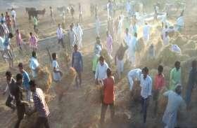 फायर बिग्रेड में पानी खत्म, युवाओं ने बुझाई आग, बचाया गोवंश