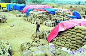 Farmer: अन्नदाता फिर बेबस, जो दाम मिल रहा उसी में बेच रहे उपज