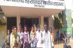 सूखी फसलें लेकर किसानों ने एसडीएम कार्यालय के बाहर किया प्रदर्शन