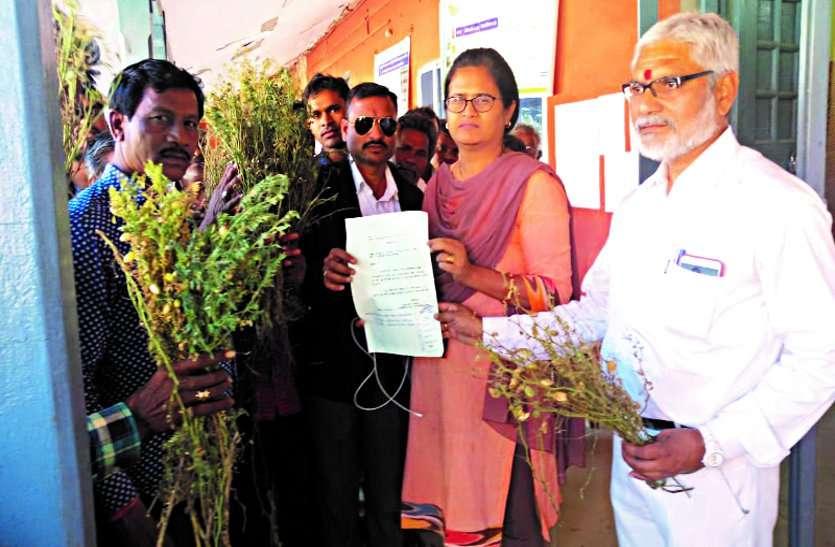 असमय बारिश से रबी फसल हुई पूर्णत: चौपट, किसानों ने एसडीएम को बताई अपनी पीड़ा