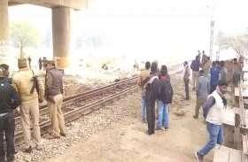 ट्रेन की चपेट में आने से 10 गोवंशों की मौत