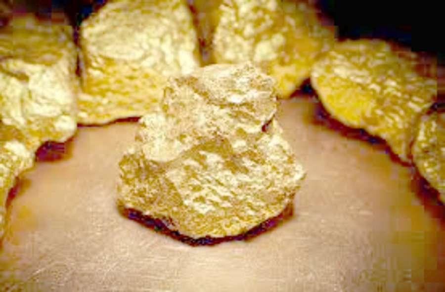 Mining will start in May from gold mine in Chakariya of Singrauli