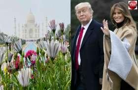 US President Donald Trump देखेंगे ताजमहल, जबर्दस्त सुरक्षा, हजारों लोग करेंगे स्वागत