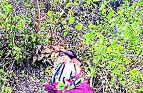घर से घुमाने की कहकर पहाड़ी पर ले गया पत्नी को और कर दी पत्थर से कुचलकर हत्या