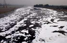 यमुना नदी में प्रदूषण का स्तर हुआ खतरनाक, सीपीसीबी ने नोएडा प्राधिकरण को ठहराया जिम्मेदार