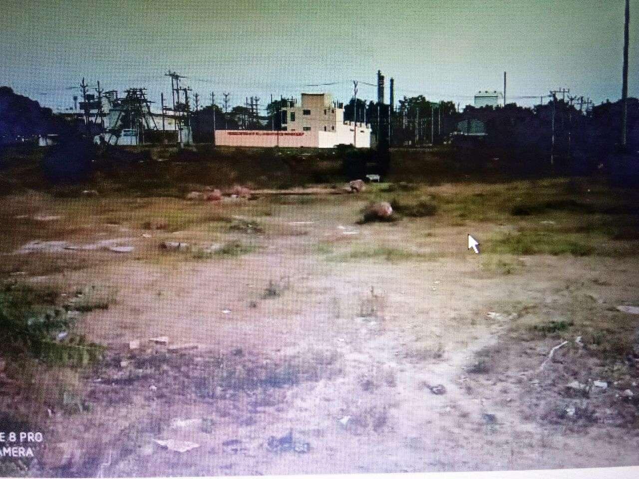 भोपाल के आसपास औद्योगिक क्षेत्रों में लगेंंगे सीएनजी प्लांट