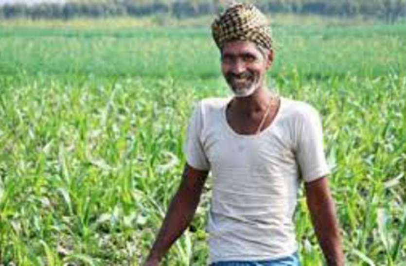 समर्थन मूल्य बढऩे से किसानों को मिलेगा फायदा