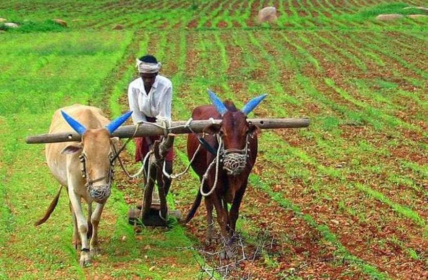 कृषि उत्पादकता बढ़ाने में कृषि विश्वविद्यालय आगे आएं: नीति आयोग