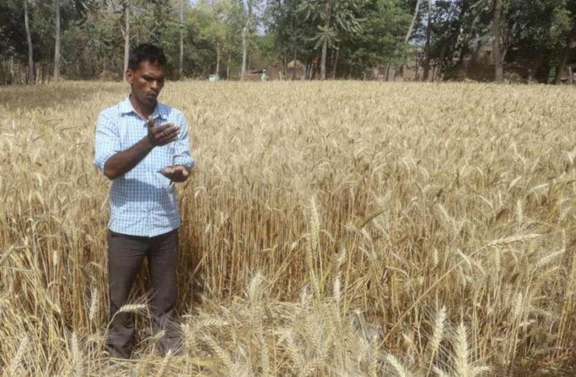 किसानों के लिए बड़ी खुशखबरी, अब यूपी के किसान पूरी दुनिया में आसानी से बेच सकेंगे अपने जैविक उत्पाद, कमाएंगे करोड़ों रुपए