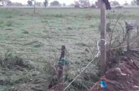 मथुरा में मूसलाधार बारिश से किसानों की फसल तबाह