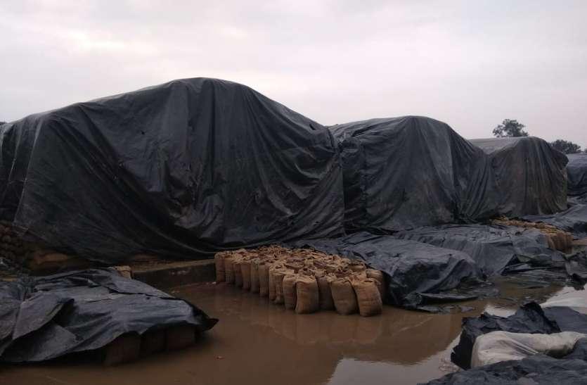 13 मार्च को धान की पावती नहीं मिलने पर किसान करेंगे चका जाम