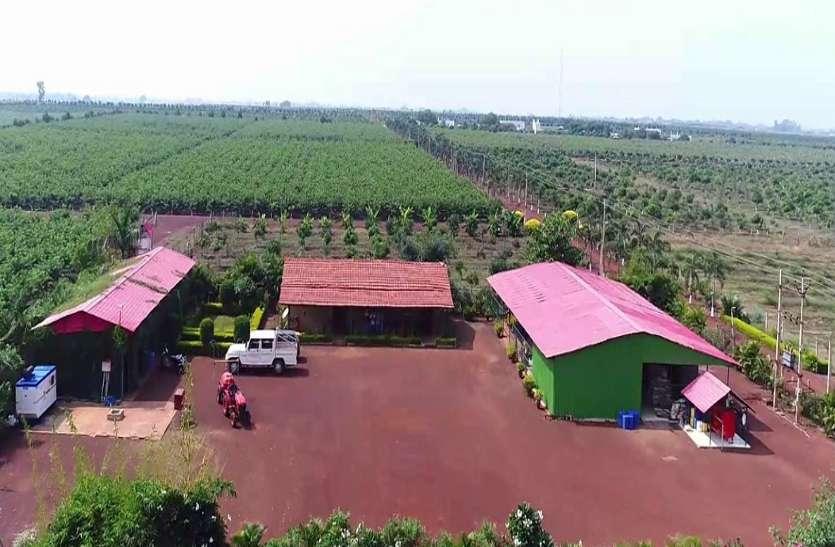 ये है एशिया का सबसे बड़ा फॉर्म, यहां 500 एकड़ में होती है 20 तरह के फलों की आर्गेनिक खेती, है न अमेजिंग छत्तीसगढ़