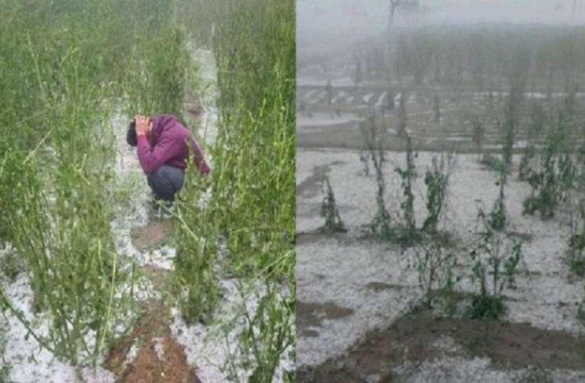 बे-मौसम बारिश और ओलावृष्टि से फिर हुआ ठंड का अहसास, किसानों को हुआ भारी नुकसान