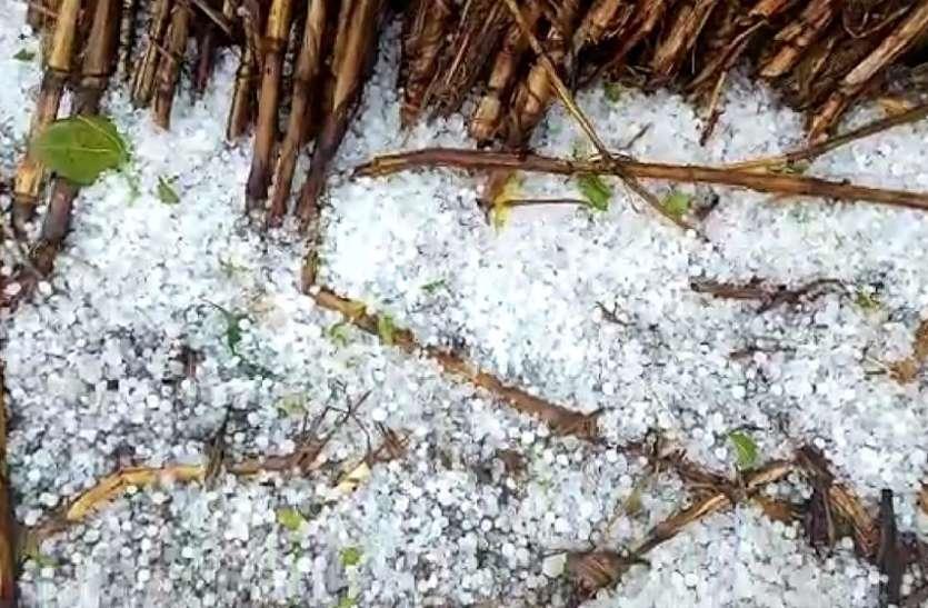 जिले में तीसरे दिन भी बारिश-ओले, किसानों के अरमानों पर फिरा पानी