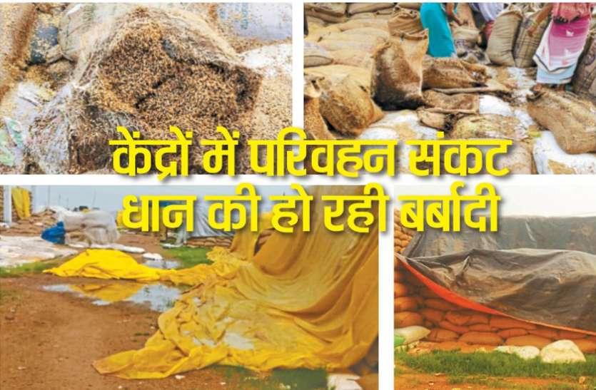 समितियों में परिवहन संकट : धान की हो रही बर्बादी