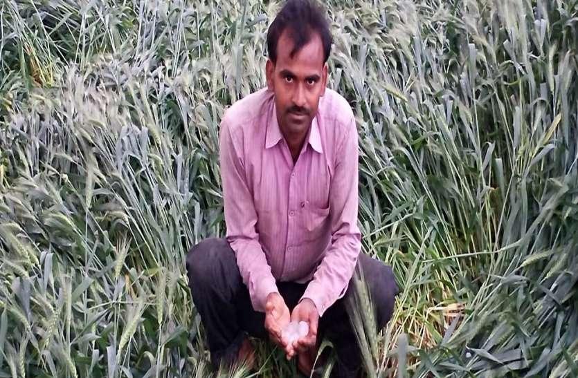 एक बार फिर किसानों का दिल दहल उठा, जब आसमान से पत्थरों की हुई बारिश, किसानों ने बयां किया दर्द