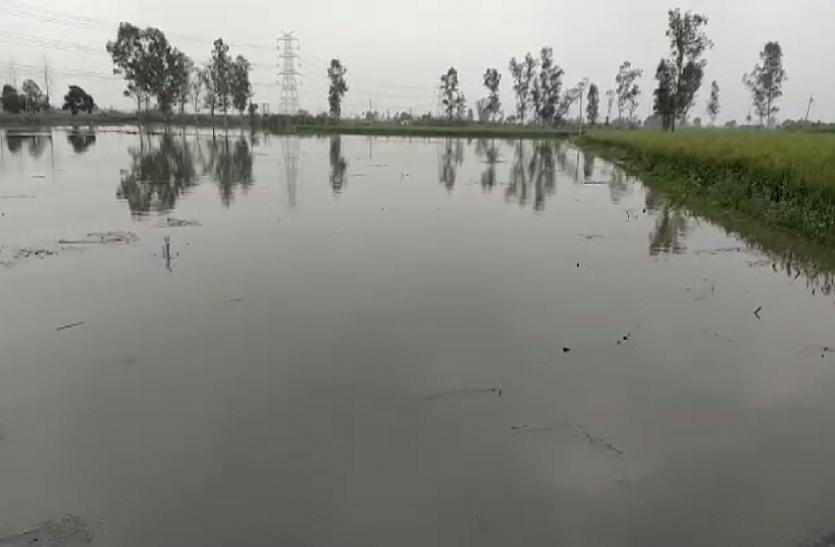 मामोर झील की दीवार टूटी, हजारों बीघा फसलें नष्ट, हर जगह पानी-ही पानी