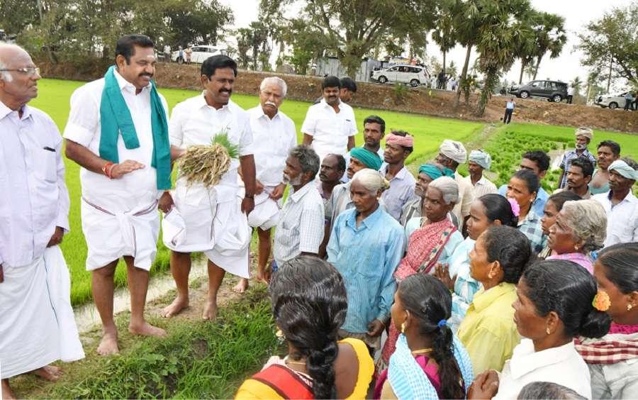 Chief Minister Edappadi K. Palaniswami Sows With Farmers - किसानों के साथ  खेत में उतरे 'धरती पुत्र' मुख्यमंत्री | Patrika News