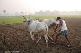 किसान न्याय योजना से मिली राशि से किसान हो रहे हैं खुशहाल